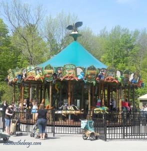 Explore the Toronto Zoo