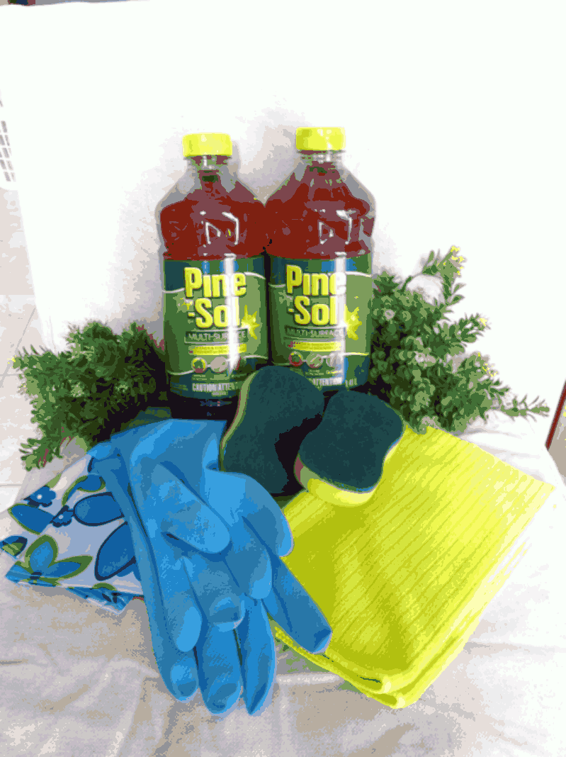 Enter below to win a Pine Sol Prize Pack featuring:
