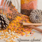 Cinnamon Scented Fall Colored Rice