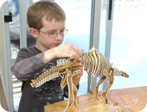 Make Your Own Dinosaur Kits from DK Canada