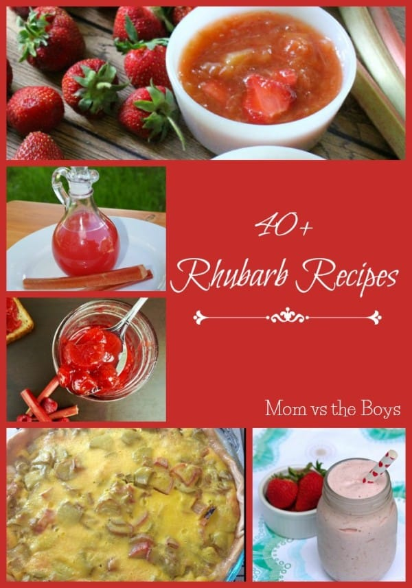 40 Rhubarb Recipes