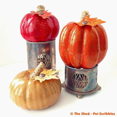 Tone on Tone Pumpkin Trio