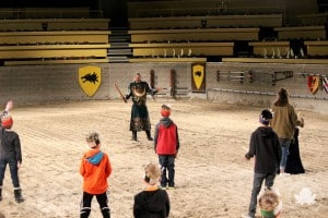 medieval times knight training