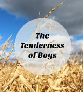 The Tenderness of Boys