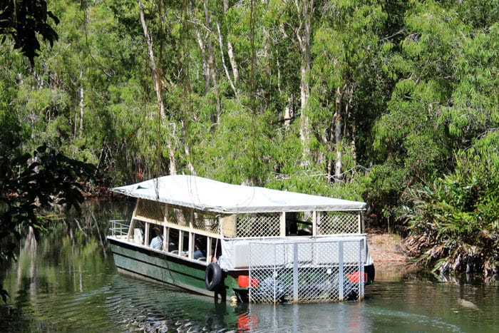 Hartley's lagoon boat tour