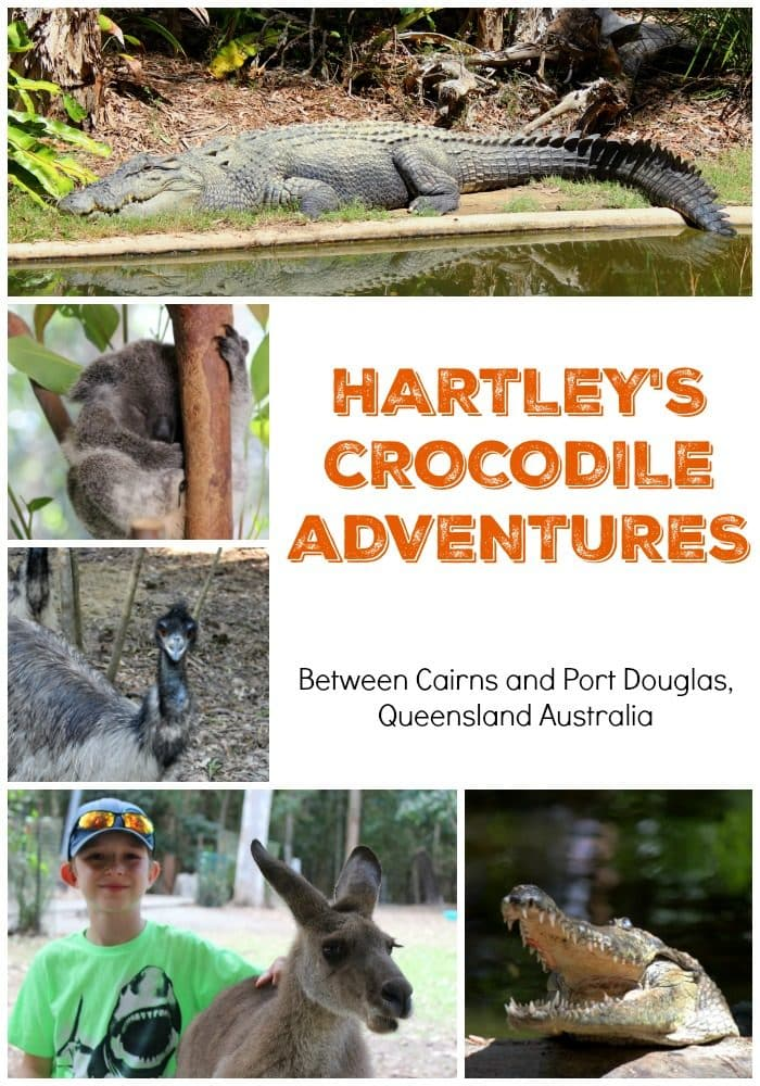 Hartley's Crocodile Adventure