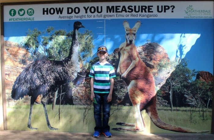 Featherdale Wildlife Park Review
