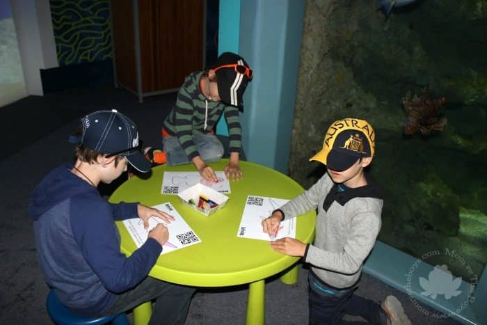 Sydney with kids - Sea Life Aquarium
