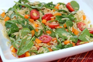 Fire Roasted Tomato Orzo Salad