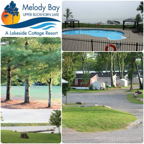 Melody Bay Collage