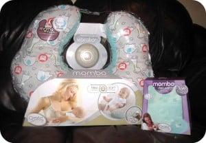 The Mombo Nursing Pillow from Comfort & Harmony