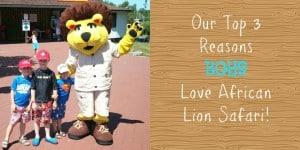 My 3 top reasons Boys love African Lion Safari