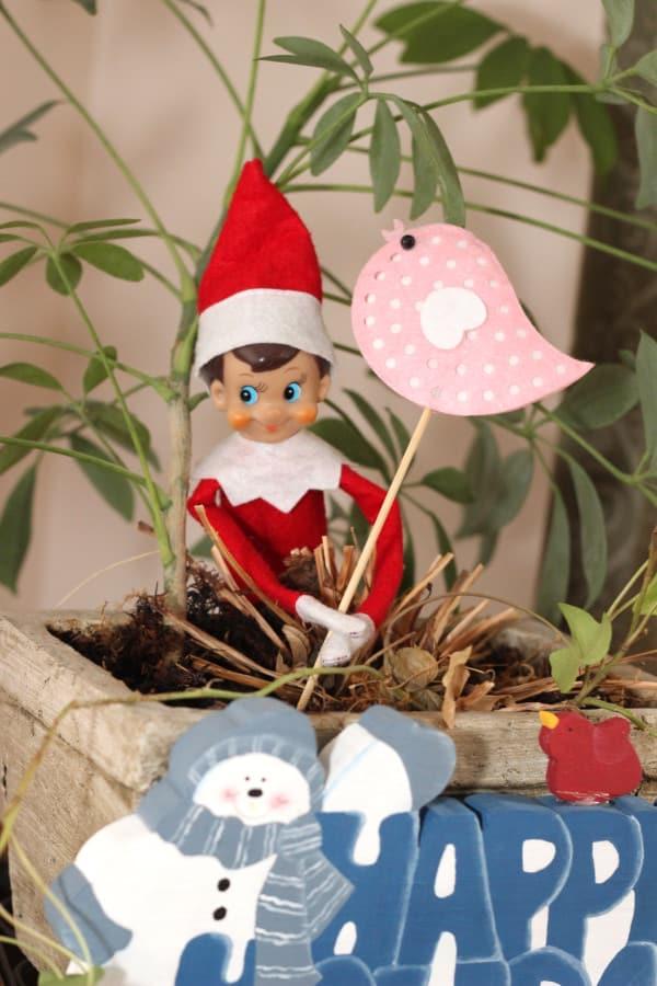 Ideas For Your Elf On The Shelf Mom Vs The Boys