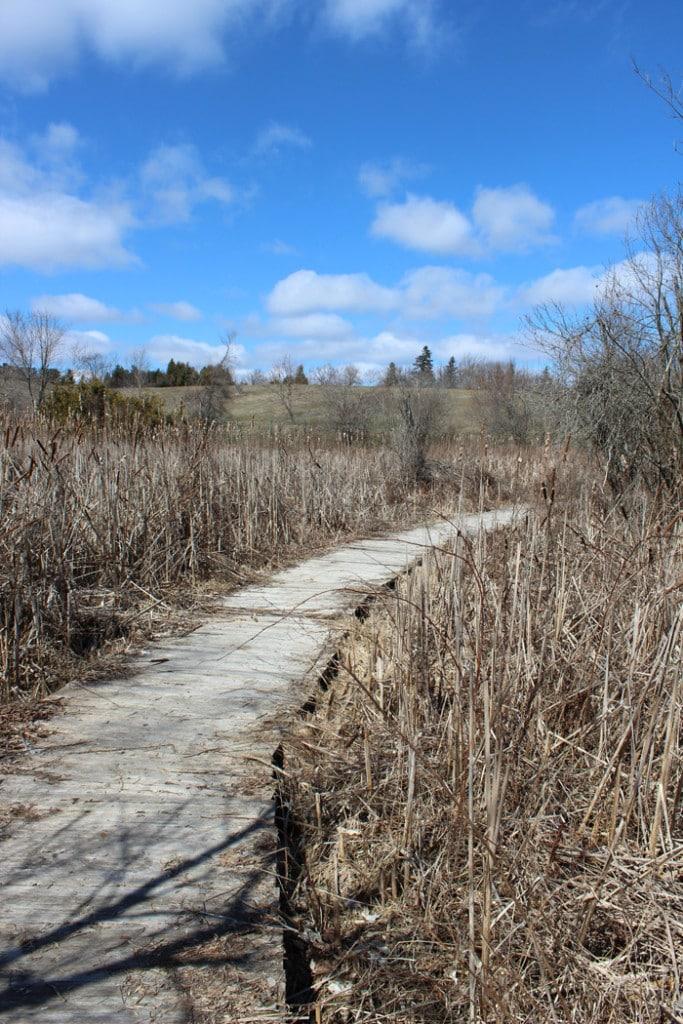 Anne's Spa Walking Trails