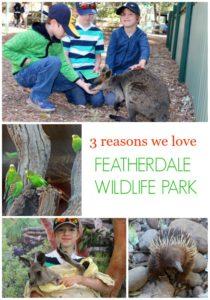 3 Reasons We Loved Featherdale Wildlife Park