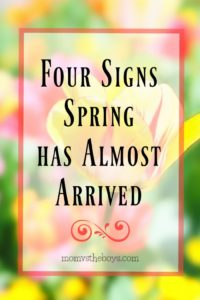 Four Signs Spring has Almost Arrived
