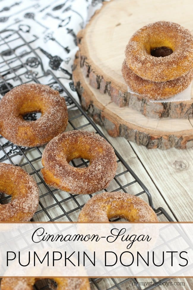 sugared pumpkin donuts