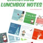 Christmas Lunchbox Jokes for kids